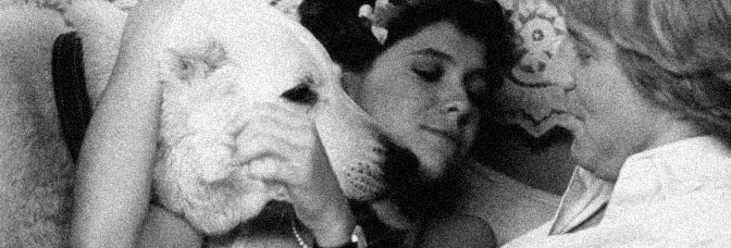 White Dog (1982, Samuel Fuller)