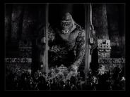 Kong at the wall. Film capture
